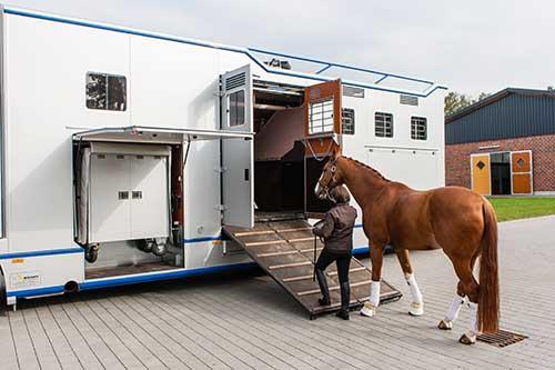 Niehoff4horses